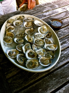 Oysters_PippaBiddle6.14